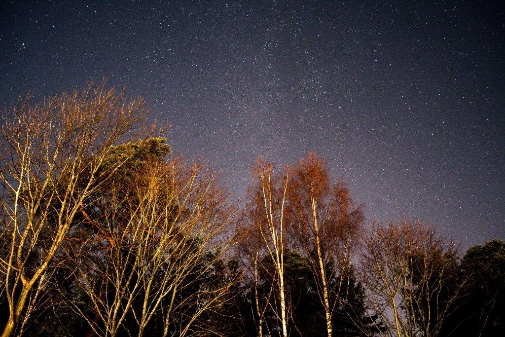 Starry night sky.