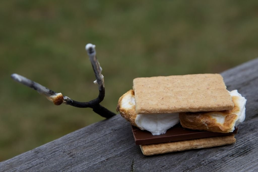 Smores stations are all the rage among kids.