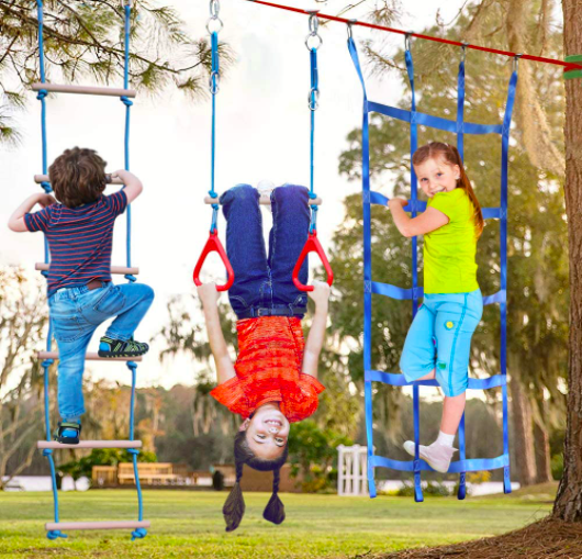 Kids Playing On Monkey Bars, A Rope Ladder, and A Different Ladder